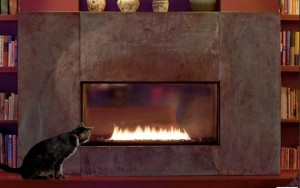 home cat and fireplace